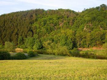 Prodej pozemku 1205 m², Příšov
