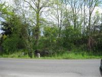 Pohled ze silnice (Prodej pozemku 8670 m², Smědčice)