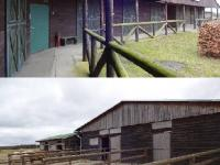 : 11 venkovních boxů pro koně (Prodej komerčního objektu 163788 m², Nevid)