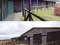 : 11 venkovních boxů pro koně (Prodej domu v osobním vlastnictví 1080 m², Nevid)