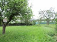 : zahrada (Prodej domu v osobním vlastnictví 229 m², Chválenice)