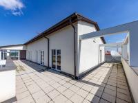 Prodej bytu 3+kk v osobním vlastnictví 159 m², Plzeň