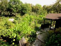 Prodej pozemku 1004 m², Plzeň