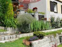 Prodej chaty / chalupy 60 m², Čižice