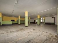 Pronájem komerčního objektu 297 m², Sokolov