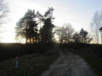 : přístup - Prodej pozemku 3575 m², Bučí