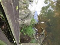 Za zahradou teče potůček, ke kterému je ze zahrady přístup (Prodej domu v osobním vlastnictví 260 m², Nečtiny)