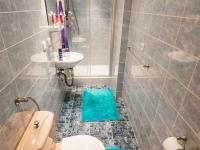 Koupelna s WC (Pronájem bytu 1+kk v osobním vlastnictví 22 m², Praha 8 - Libeň)