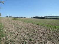 Prodej pozemku 1500 m², Jamné