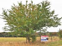 Prodej pozemku 2071 m², Opatovice I