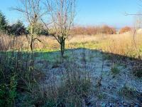 Prodej pozemku 2000 m², Radostín