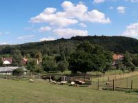 Prodej pozemku 1695 m², Jince