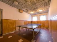 Stolní tenis (Prodej penzionu 1670 m², Lučany nad Nisou)