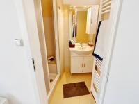 koupelna (Prodej bytu 2+kk v osobním vlastnictví 55 m², Praha 7 - Holešovice)