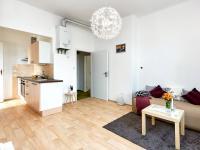 obývák s k.k. (Prodej bytu 2+kk v osobním vlastnictví 55 m², Praha 7 - Holešovice)