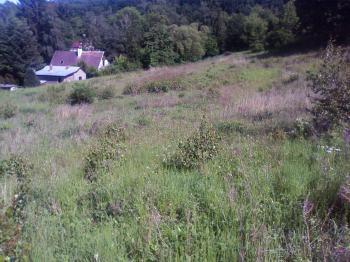 Prodej pozemku 4809 m², Ostředek