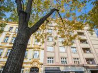 Prodej bytu 2+kk v osobním vlastnictví 56 m², Praha 7 - Holešovice