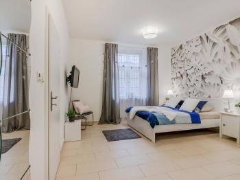 Pronájem bytu 2+kk v osobním vlastnictví 48 m², Praha 7 - Holešovice