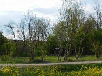 Prodej pozemku, 499 m2, Dub nad Moravou