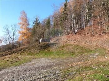 Celkový pohled na pozemek - Prodej pozemku 3648 m², Zdislava
