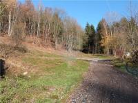 Příjezdová cesta - Prodej pozemku 3648 m², Zdislava