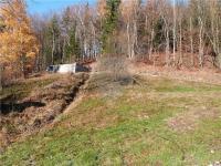 Pozemek (Prodej pozemku 2371 m², Zdislava)