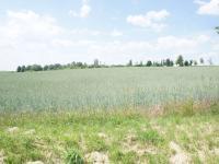 Prodej pozemku 24892 m², Libeř