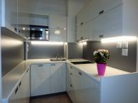 Kuchyňský kout (Pronájem bytu 2+kk v družstevním vlastnictví 56 m², Praha 3 - Vinohrady)