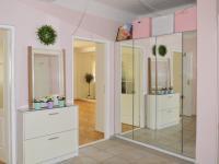 hala - vestavěné skříně (Pronájem bytu 2+1 v osobním vlastnictví 73 m², Praha 3 - Žižkov)