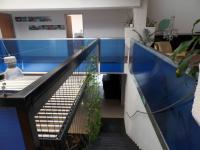 Schodiště (Pronájem obchodních prostor 100 m², Praha 7 - Holešovice)