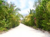 Cesta k pláži - Prodej domu v osobním vlastnictví 200 m², Coral Views