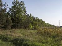 Prodej pozemku 6552 m², Káraný