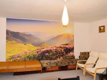 velký pokoj v patře - Prodej domu v osobním vlastnictví 130 m², Želízy