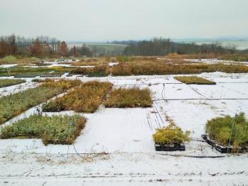 Zahrady - Prodej pozemku 58798 m², Litomyšl