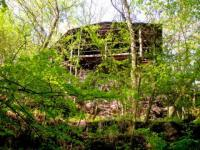 chata z cesty (Prodej chaty / chalupy 20 m², Týnec nad Labem)