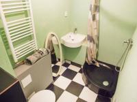 Koupelna s wc (Prodej bytu 2+kk v osobním vlastnictví 46 m², Beroun)