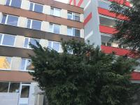 Pronájem bytu 3+1 v družstevním vlastnictví 69 m², Kladno