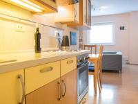Detail kuchyňské linky (Prodej bytu 1+kk v osobním vlastnictví 35 m², Praha 9 - Letňany)