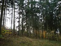 Prodej pozemku 10260 m², Lašovice