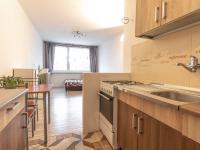 pohled z kuchyňského koutu - Pronájem bytu 2+kk v osobním vlastnictví 41 m², Kladno