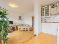 Obývací pokoj s kuchyňským koutem - Prodej bytu 1+kk v osobním vlastnictví 30 m², Praha 3 - Žižkov