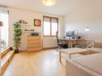 Obývací pokoj - Prodej bytu 1+kk v osobním vlastnictví 30 m², Praha 3 - Žižkov