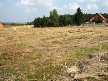 Prodej pozemku 3000 m², Zavidov