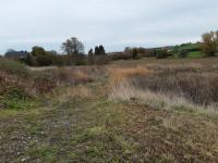 Prodej pozemku, 1156 m2, Studeněves