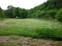 Prodej pozemku 6077 m², Krupka