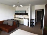Pronájem bytu 1+kk v družstevním vlastnictví 32 m2, Ústí nad Labem