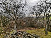 horní část zahrady - Prodej pozemku 1588 m², Malé Žernoseky