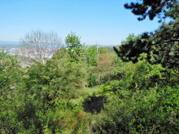 Prodej pozemku 1383 m², Ústí nad Labem (ID 024-N04