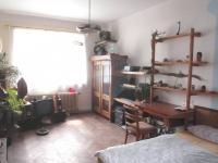 pokoj1 (Prodej bytu 1+1 v osobním vlastnictví 46 m², Praha 4 - Nusle)