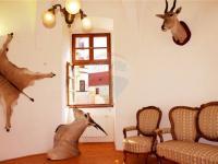 Pronájem historického objektu 344 m², Kostelec nad Černými Lesy
